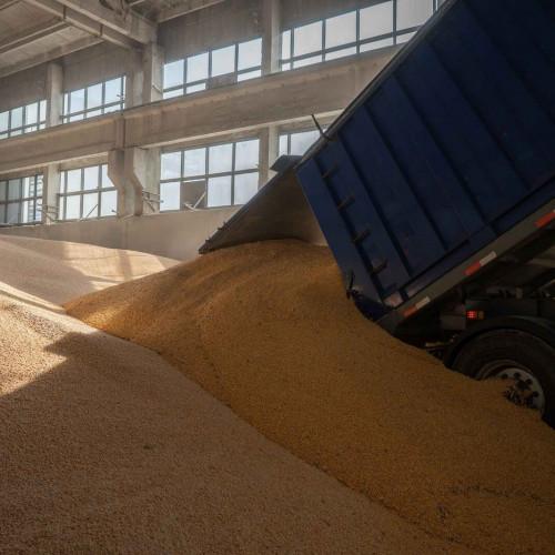 """Перевалка зерна """"Вагон-Склад-Судно"""""""